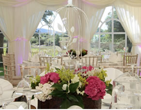 marquee-solutions-ie-marque-hire-family-celebration1a
